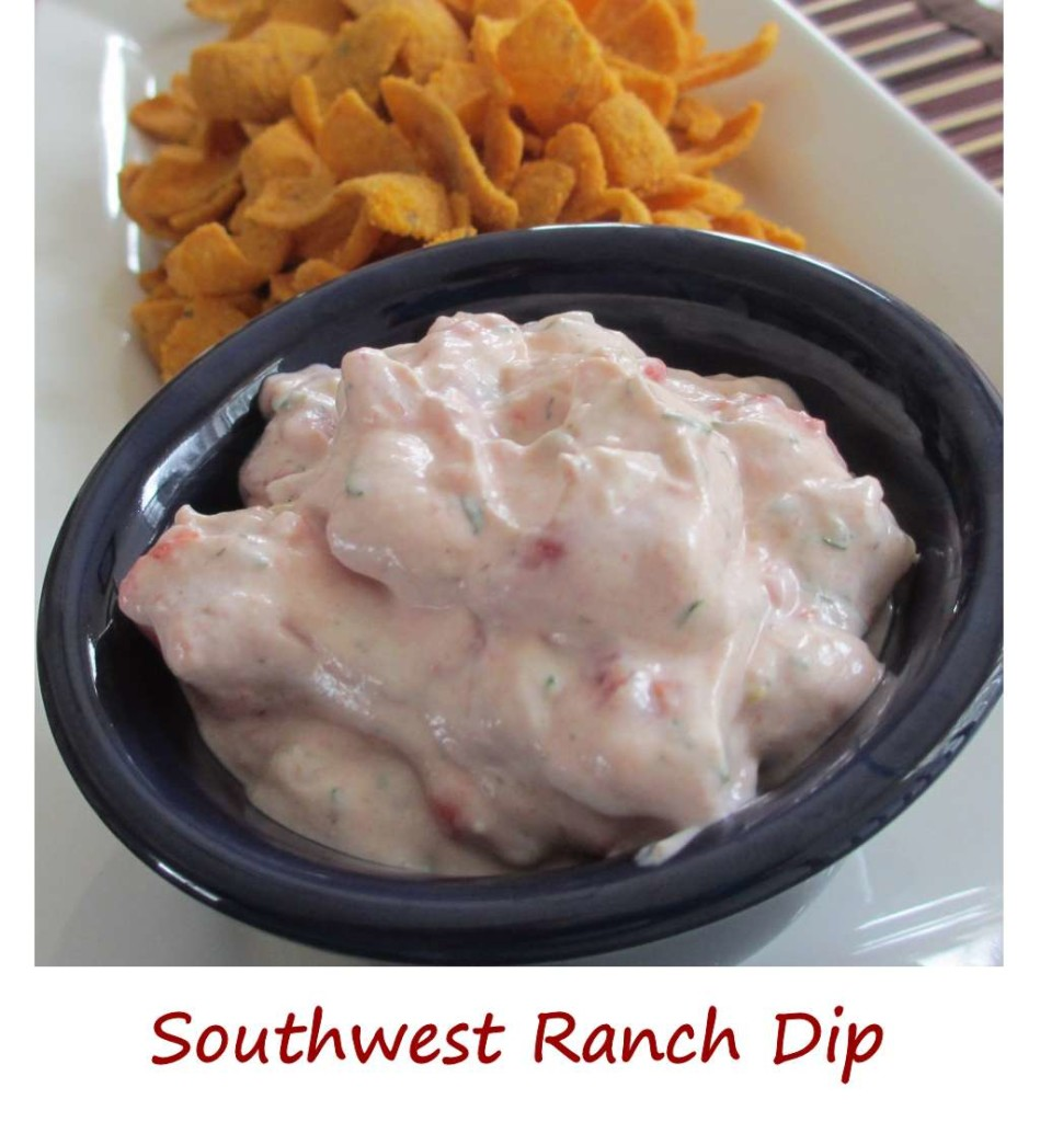 Southwest Ranch Dip