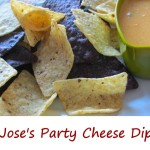 Jose's Party Cheese Dip