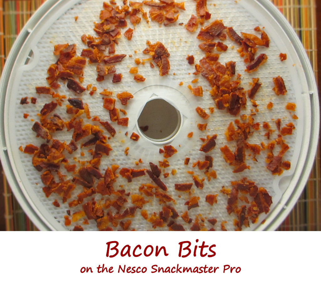 Bacon Bits on the Nesco Snackmaster Pro